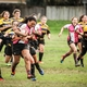 Quins Win NorCal Tourney Titles